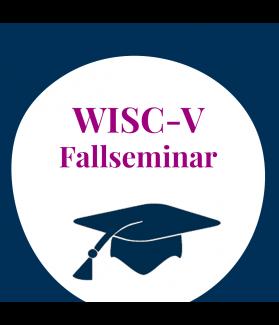 Supervisionsseminar: Intelligenzdiagnostik mit der WISC-V (ehem. HAWIK)