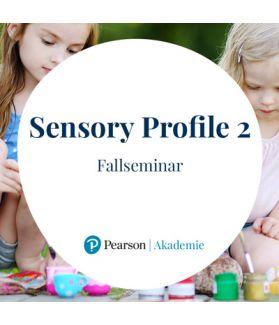 Interpretation des Sensory Profile 2 (SP 2) – Seminar für AnwenderInnen