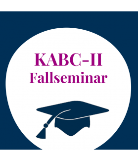 Supervisionsseminar: Intelligenzdiagnostik mit der KABC-II