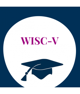 Seminar: Intelligenzdiagnostik mit der WISC-V (ehem. HAWIK)