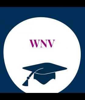 Seminar: Intelligenzdiagnostik mit der WNV