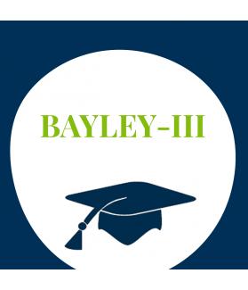 Seminar: Entwicklungsdiagnostik mit der BAYLEY-III